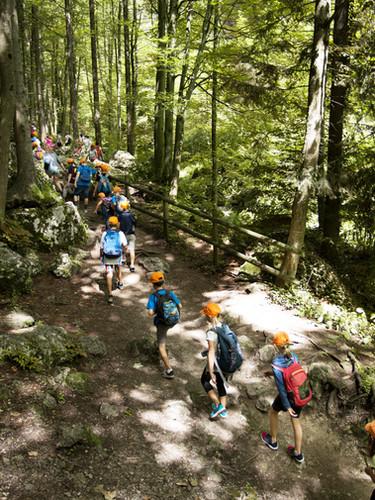 School Trip in Forest