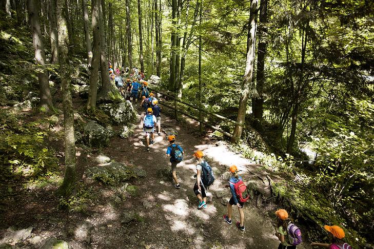 Voyage scolaire à Forest