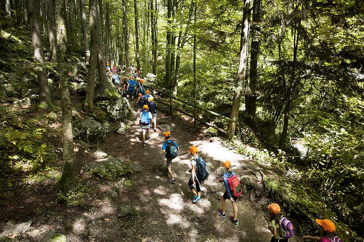 Szkolna wycieczka w lesie