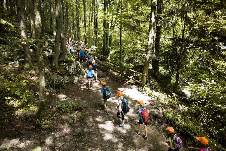 a group of kids with backpacks hiking up a trail