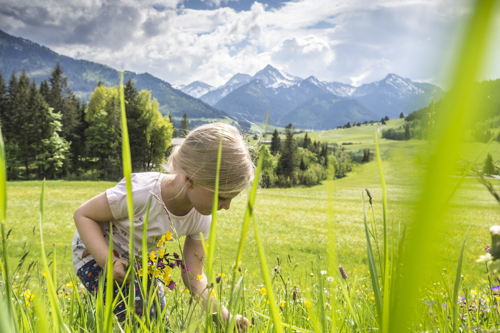 Girl Picking Flowers in a Meadow