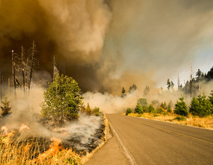 Climate Change Contributing to California Forest Fires (Again)