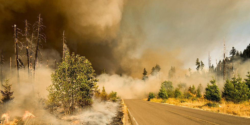 Ai4 FireSense: Early Wildfire Detection Technology Deployment
