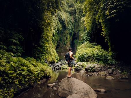 11/04 - Jungle uitdagingen