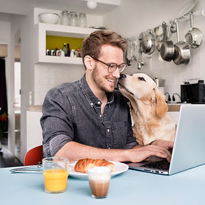 Homeoffice mit Hund