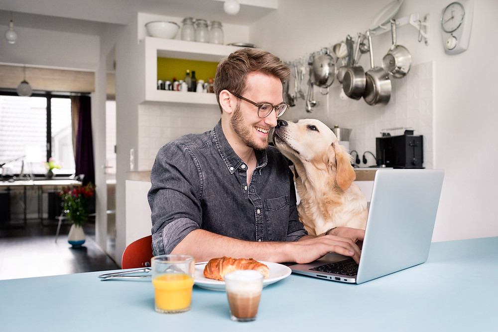 A man wearing glasses is sitting in the kitchen in front of a laptop while a blonde retriever dog nuzzles the left hand side of his face, which makes the man smile. There is a breakfast of orange juice, coffee, and a croissant next to the man's right elbow.