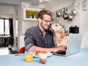 The Importance of Work Life Balance