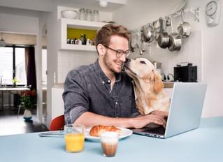 10 mil vacantes para trabajar desde casa, ofrece Empleo Comfama