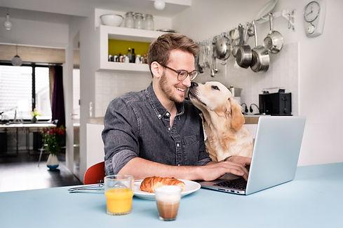 Pracování z domova home office program v cloudu