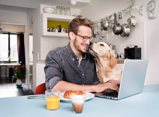 Why Working From Home Is No Longer Just a Benefit