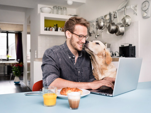 Why You Should Still Be Networking While Working From Home