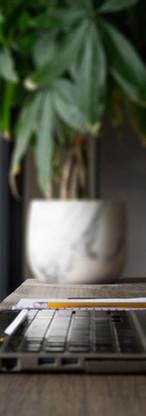 Reflexión de planta portátil