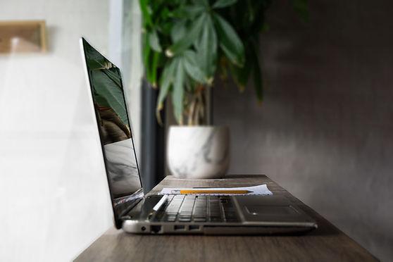 Laptop Plant Reflection