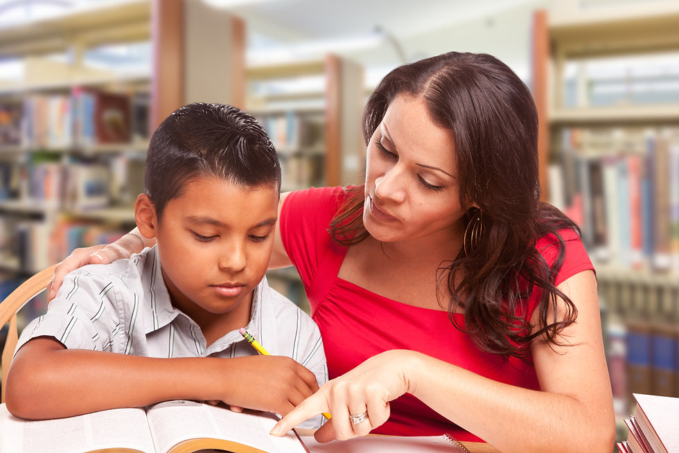 Tutoring a Student