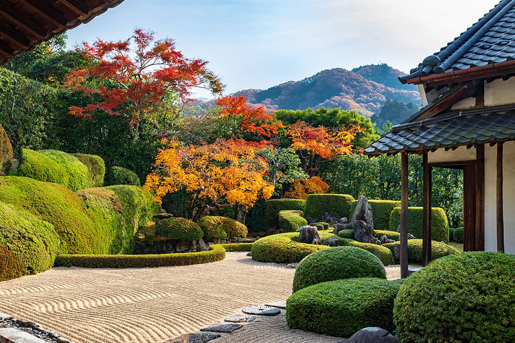 秋の頼久寺庭園