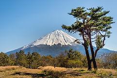 Le mont Fuji en arrière-plan
