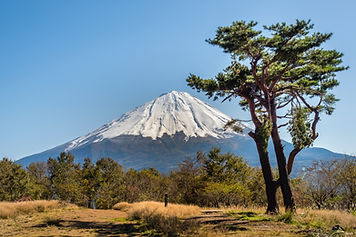 Mount Fuji in the Background