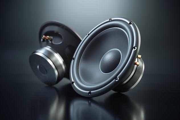 Озвучаване за сватба във Варна, Sound Speakers