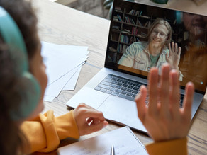 Entrevistas em profundidade via web conferência