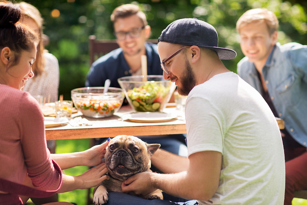 A dog getting petted by people sitting around a table
