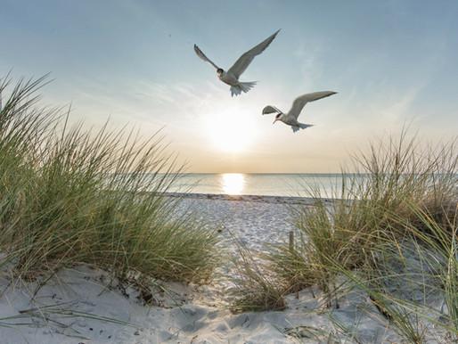 Dutch Tourism krijgt opdracht voor arrangement ontwikkeling Holland Boven Amsterdam