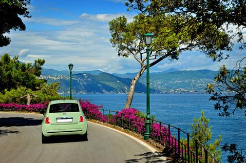 aliveXperiences rental car