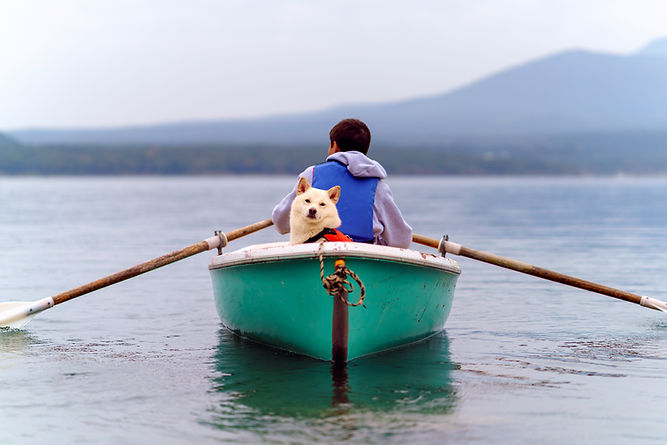 Canoe Trip with a Dog