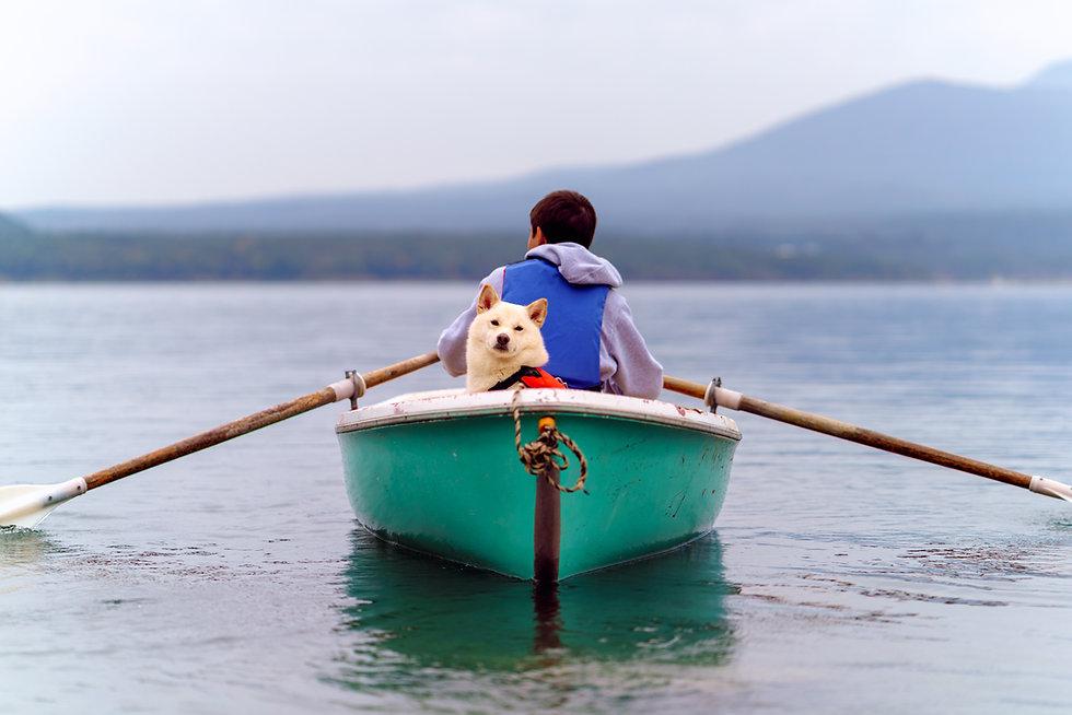 Viaje en canoa con un perro
