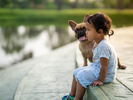 Can Children Suffering with Eczema Have Pets?