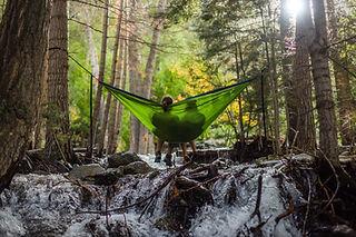 Hamac de forêt