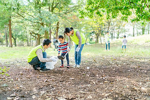 Park Bereinigung