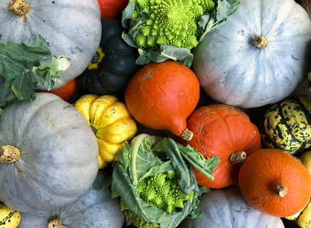 Boosting Your Immune System is Your Best Defense Against Covid19 This Fall