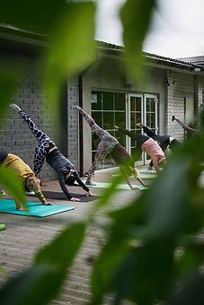 Cours de yoga en plein air