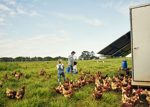 Sustainable Food Business Outsourced Customer Service