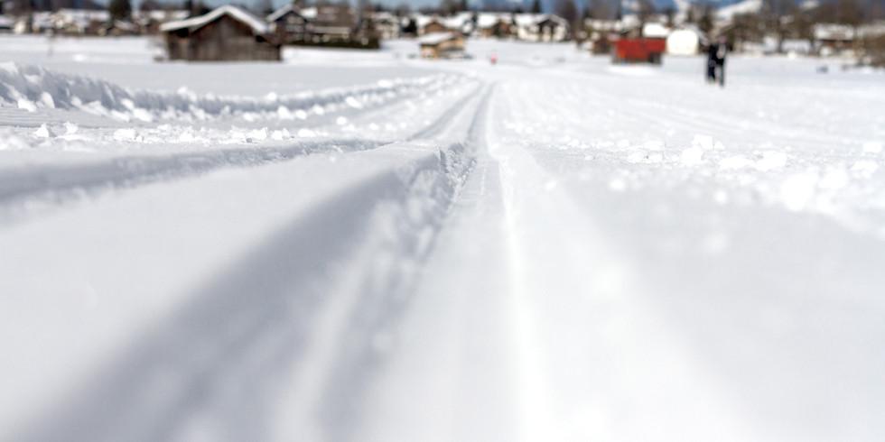 24. Weltmeisterschaft im  Skilanglauf (WMCC)