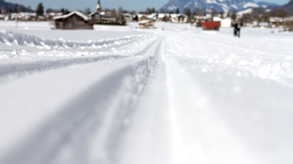 Nordic Skiing GP1 Muscular Endurance Strength