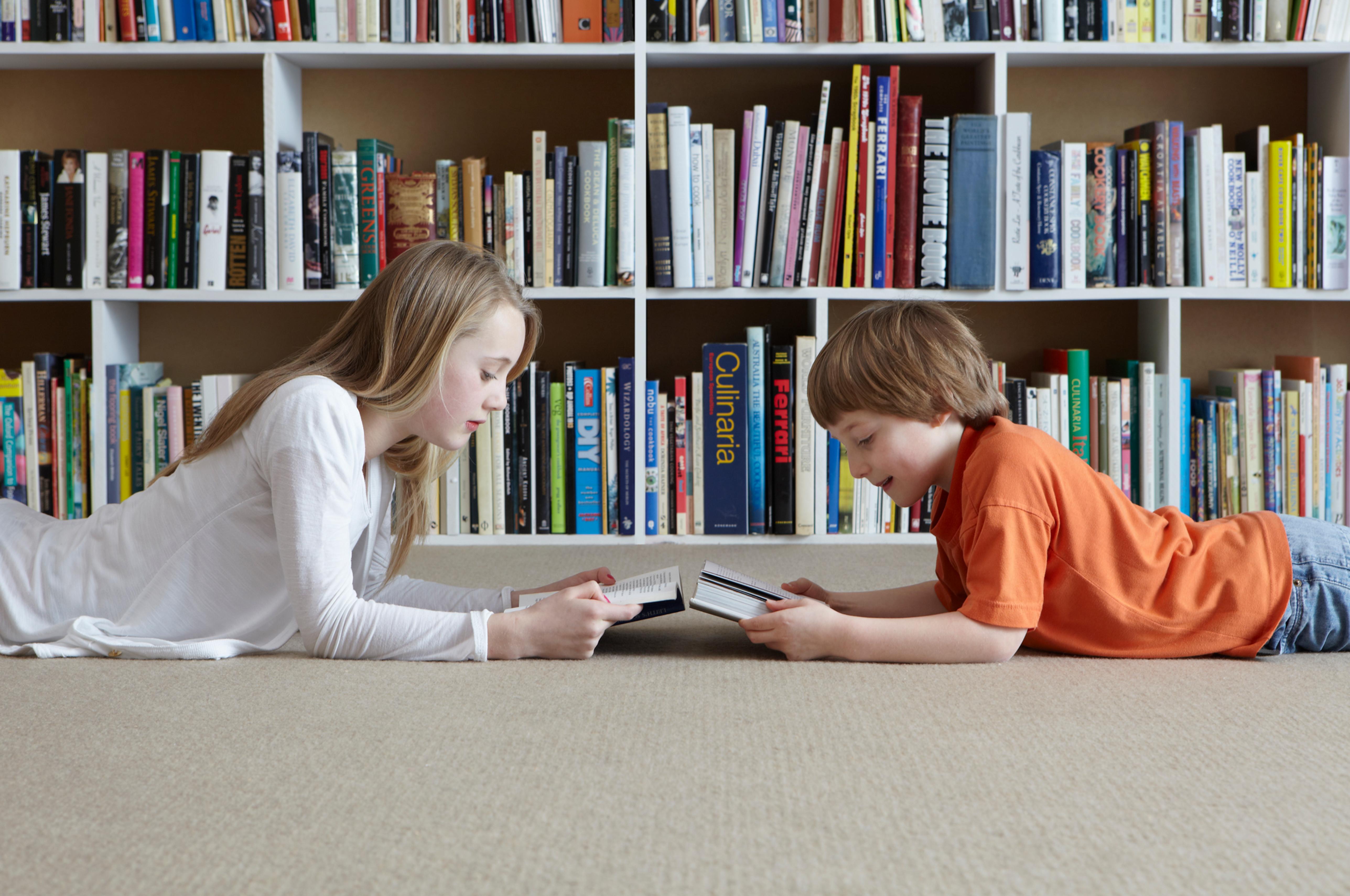 BrainSkills Reading Academy Consultation