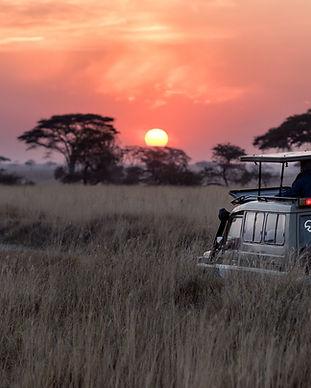 Safari-Sonnenaufgang