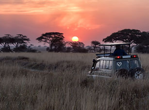 Private & Small Group Tours - Inspire Me World Travel | Bespoke Travel