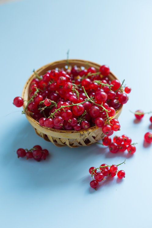 Currants and Gooseberry (Ribes)