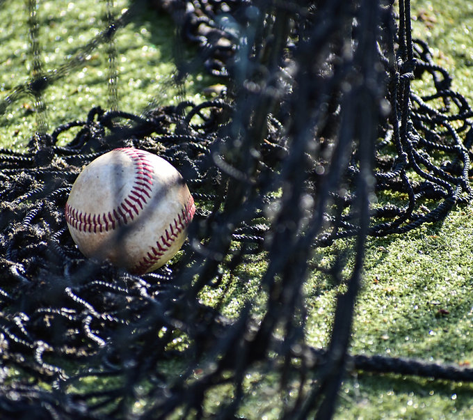 Baseball in Netting