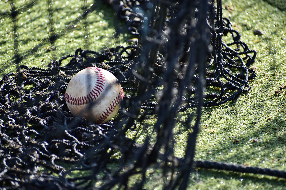 Baseball in Netting