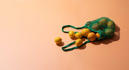 Citrissan Citrus Fruits