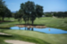 호수가있는 골프 코스
