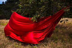 Roter Stoff unter einem Baum