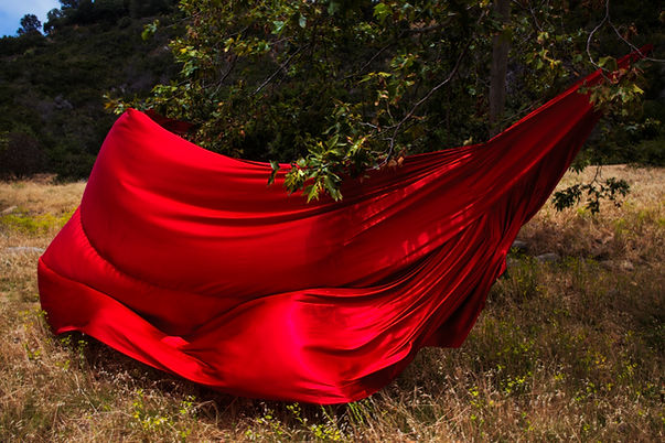 Red Fabric Under a Tree