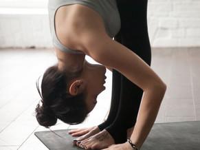 Yoga Asana - Die Vorwärtsbeuge