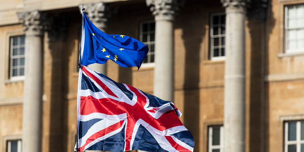 Wavemaker Wednesdays: What is the future of UK-EU trade relations?