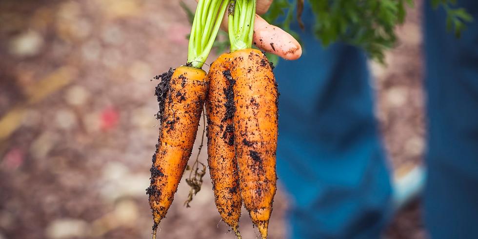Spis, med kærlighed til dig selv ~ online Ayurvedisk workshop