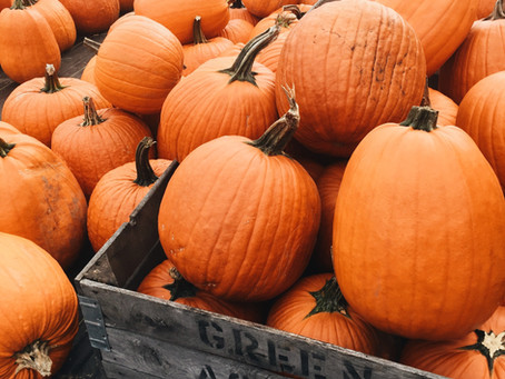 Why Pumpkin Should Be a Staple Food All Year Round